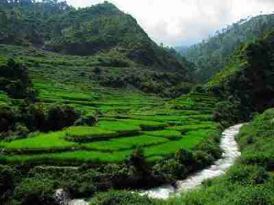Visita della città di Dharamsala e Trekking
